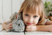 Manfaat Mempunyai Hewan Peliharaan bagi Kesehatan Mental Anak