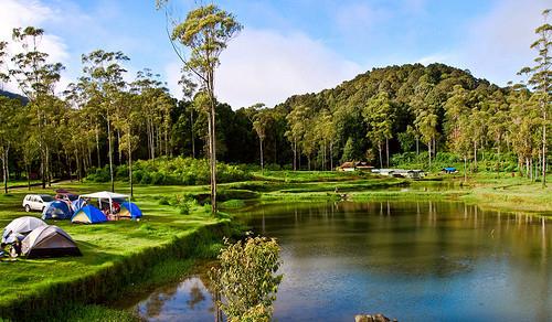 5 Inspirasi Tempat Wisata Keluarga di Indonesia 2021 Ranca Upas