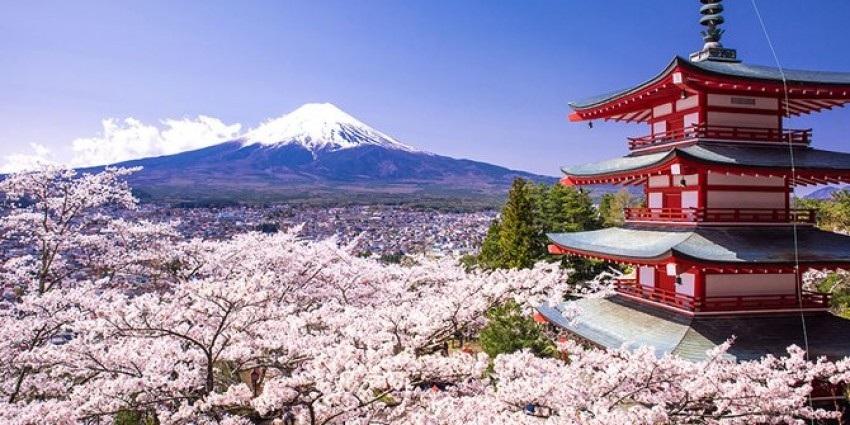 Traveling ke Jepang dan Tempat Wajib Untuk Dikunjungi