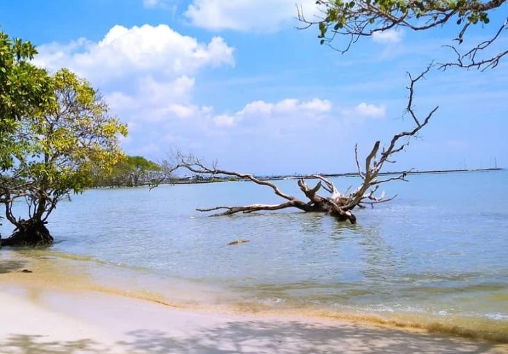 Ketenangan Alam Pantai Joko Mursodo Lamongan Manjakan Wisatawan