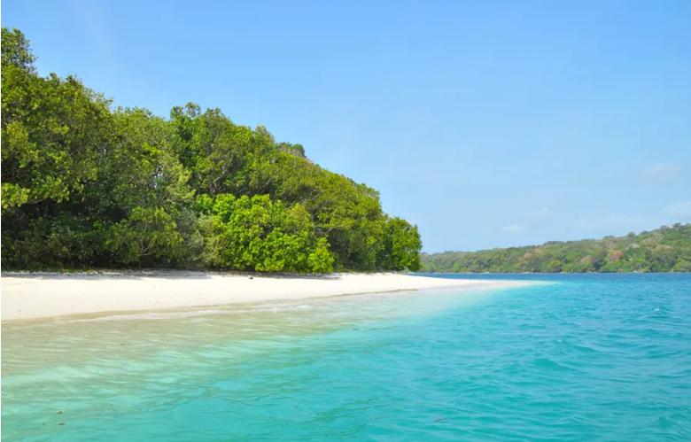 Menjelajah Keindahan Pulau Peucang Surga Tersembunyi di Ujung Kulon
